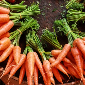 carrots_dreamstime_xl_40880463.jpg