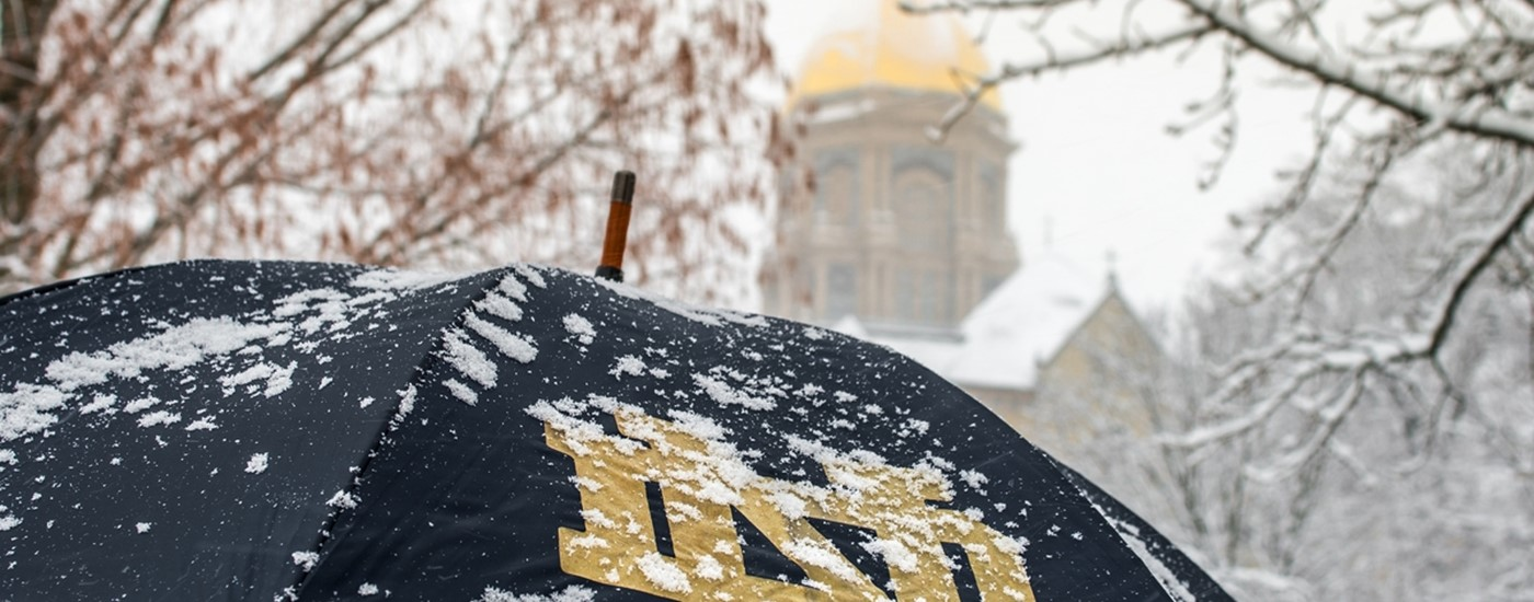 Umbrella and Snow.JPG