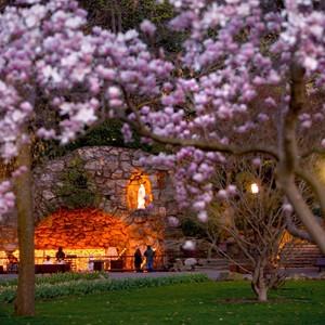 Grotto spring dusk.jpg