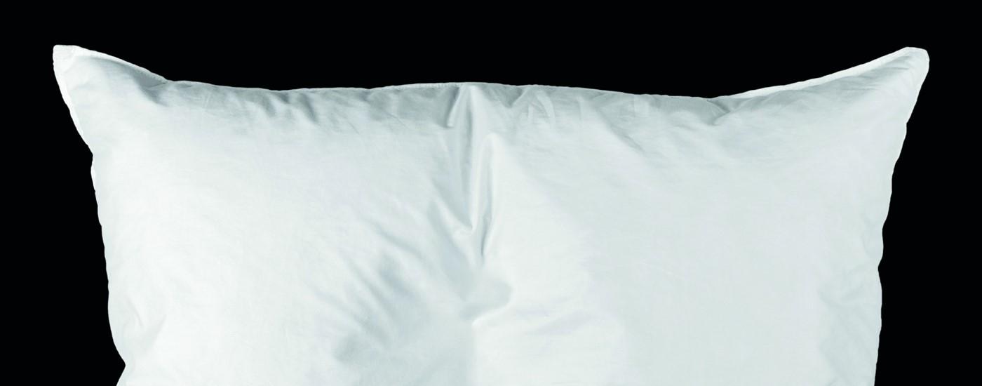 sleep_on_it_8x5.jpg