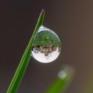 Dome in dew drop square