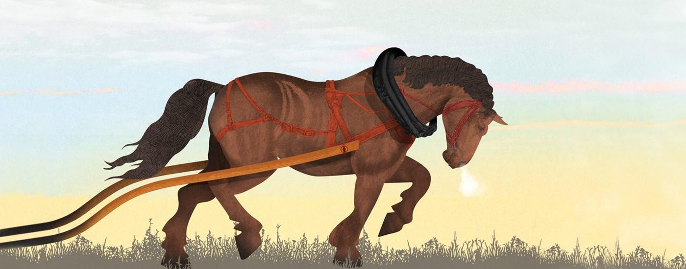 banner workhorse